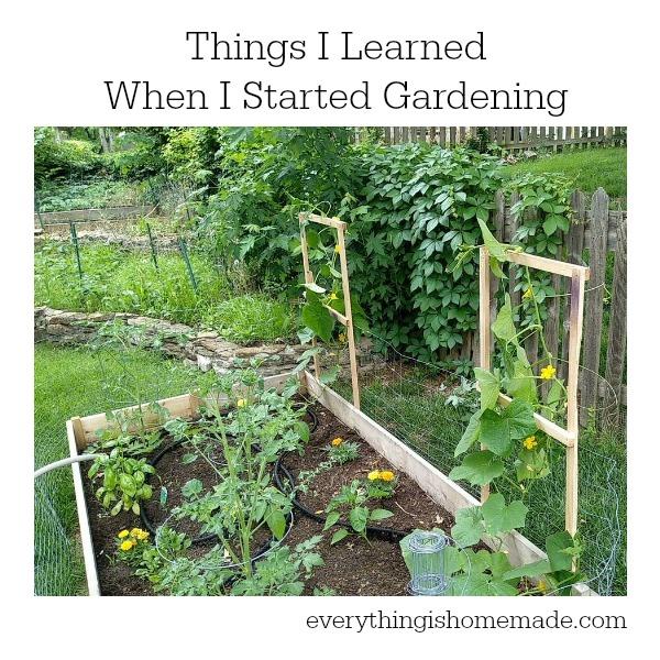 Learn Garden