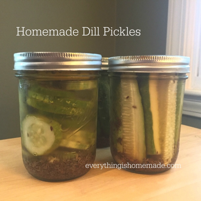 Mason jars of homemade dill pickles