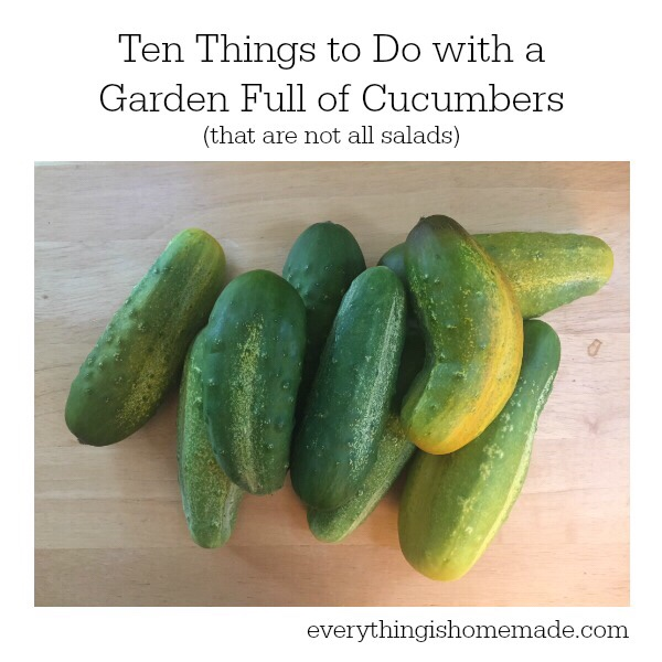 Many cucumbers from my backyard garden